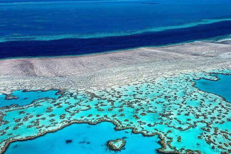 Over 2 million tourists visit Great Barrier Reef every year (Photo: Facebook/Destination Luxury)