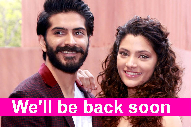 Mirzya's Harshvardhan Kapoor-Saiyami Kher might do another film together