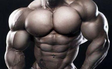 Strength Wars, fitness