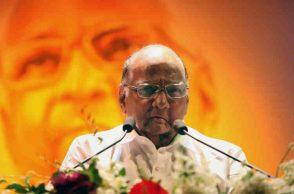 NCP president Sharad Pawar. (Photo: Express/Prashant Nadkar)