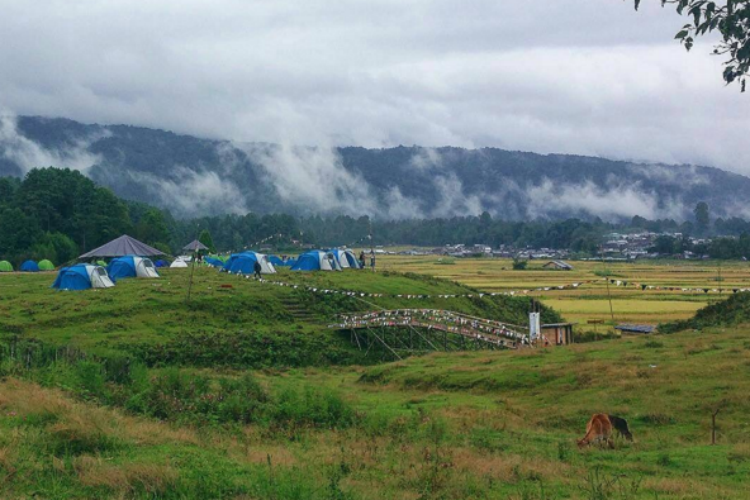 Ziro Festival Of Music Valley