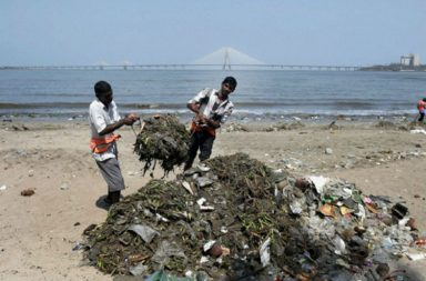 Municipality workers in Mumbai cleaning a beach (Photo: AP)