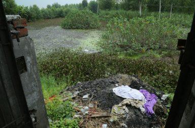 Ashes of cremation ground on Saraswati Riverbed dumped at Uncha Chandna village in Yamunanagar (Photo:Express/ Jaipal Singh)
