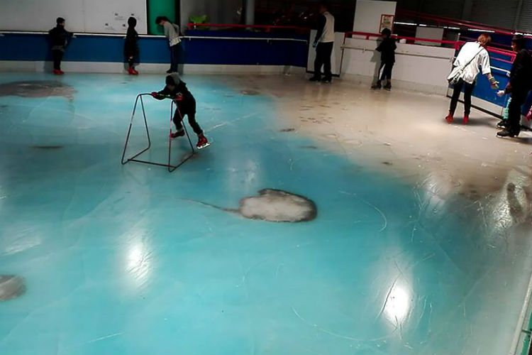 Space World Japan Skating Rink Frozen Fish | Facebook Image For InUth.com