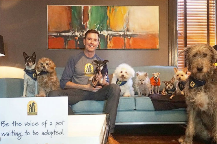 This man is giving senior dogs a new life. Check out these cutepictures!