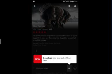 Netflix, videos