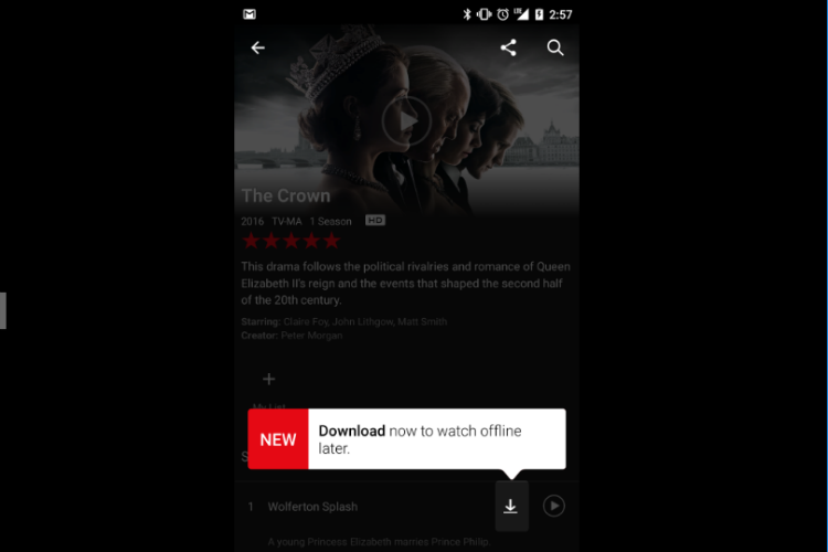 A complete tutorial on how to watch Netflix movies and shows offline