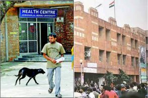 JNU stray dogs