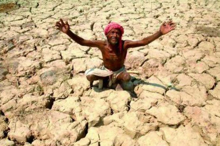 Global warming: Find out what exactly is causing water crisis inIndia