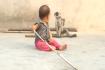 Bizarre viral video of monkey playing with achild!