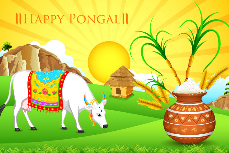 pongal-dreamstime-image-for-inuth