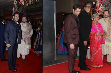 Rekha at Neil Nitin Mukesh's recption