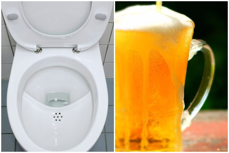 This US brewery is making beer from SEWAGE water and it's 'delicious'