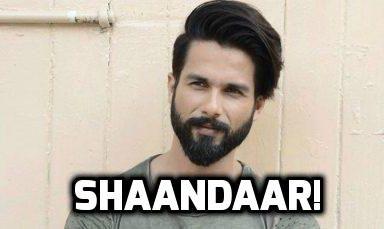 Shahid Kapoor Shaandaar