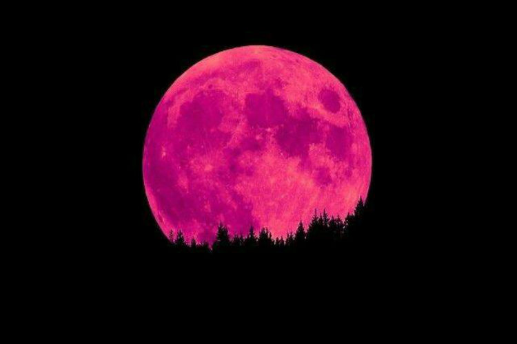 Pink Moon Will Light Up The Night Tonight But Don 39 T Be