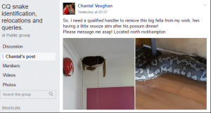 A picture posted by Chantal Vaughan on local Facebook page
