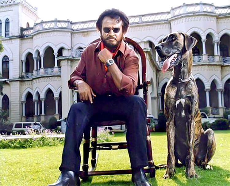 Rajinikanth in a still from 1995 Tamil hit Baashha
