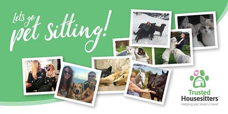 Trusted Housesitters allow pet lovers to travel for free