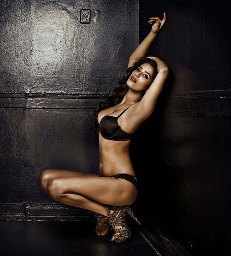 Poonam Pandey is making the hell look icy in front of her hotness