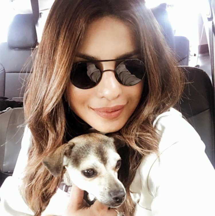 Priyanka Chopra's personal moments with pet Diana