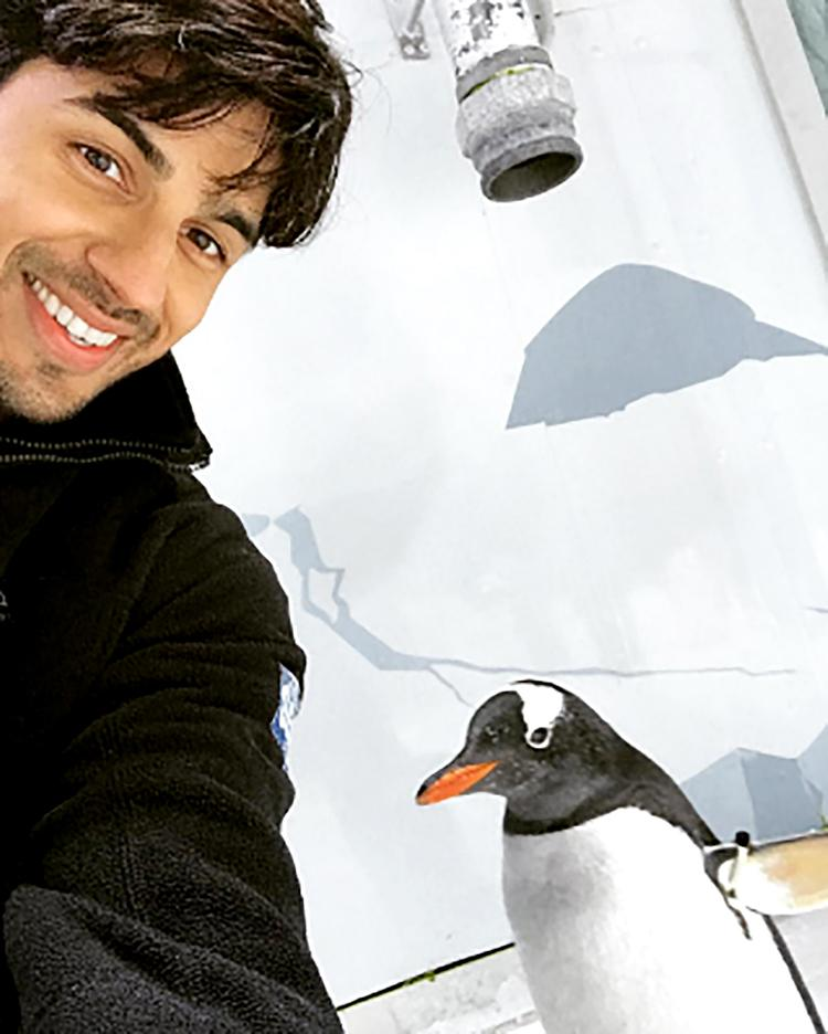 Sidharth Malhotra share a personal bonding with this penguin