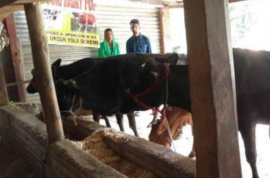 Priyanka Rani, entrepreneur, Jammu, dairy farm