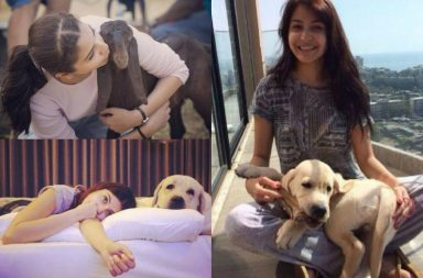Anushka Sharma is known for her love towards animals.