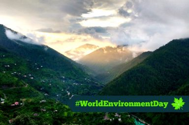 world environment day, environment day