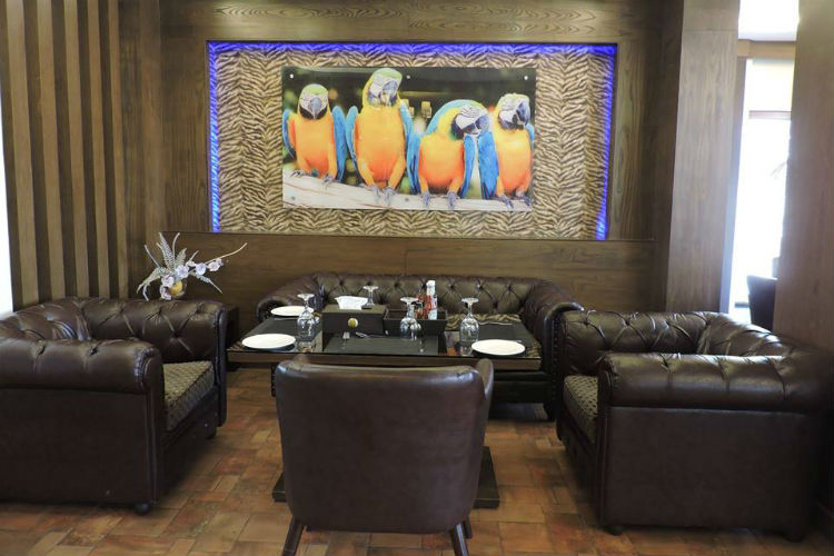 Cafe Macaw in Bahria Enclave, Islamabad