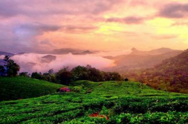 Kerala's Munnar Hill Station awarded as the Best Destination For Romance by Lonely Planet