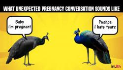 The great Indian sex vs tears debate: Sorry but the peacock's more like a 'typical playboy'