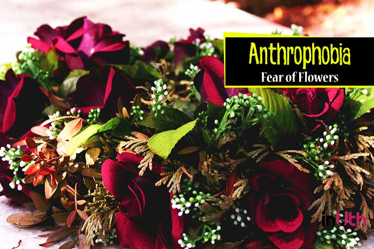 Anthophobia - Fear of flowers