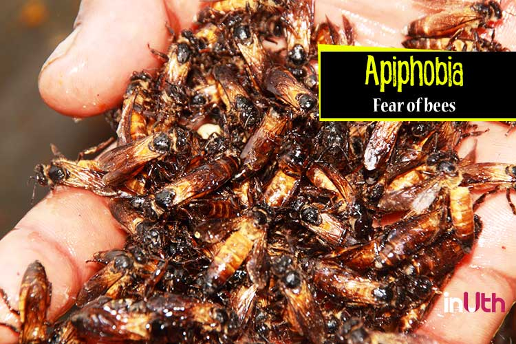 Apiphobia - Fear of bees