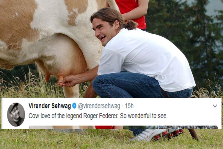 Why did Virender Sehwag tweet images of Roger Federer with cows? What point was he trying to make?