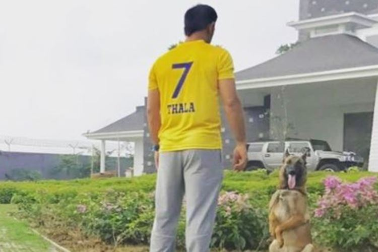 MS Dhoni is back in Chennai Super Kings' colours post two-year ban, gets viral on internet | See Photo