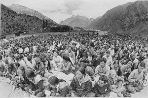 dalai-devotees