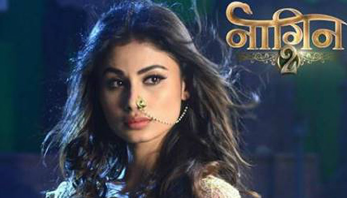 Poster of Naagin 2 (Courtesy: Express Photo)