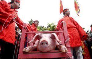 Pig-Slaughter Festival