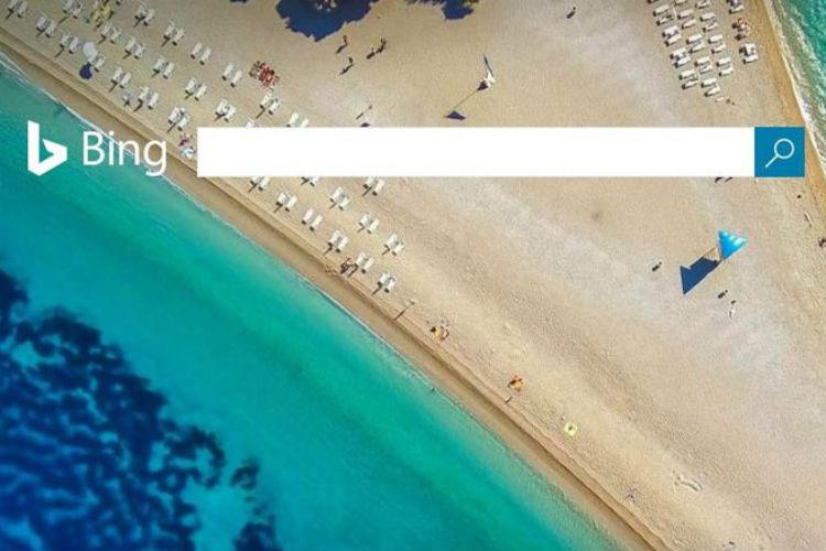 Bing Homepage, Penis, Twitter