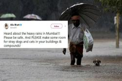 Stray animals helpless during Mumbai rains. Here is how you can help