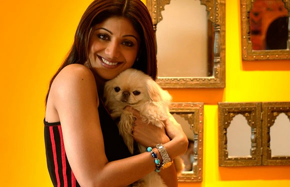 Shilpa Shetty with her pet
