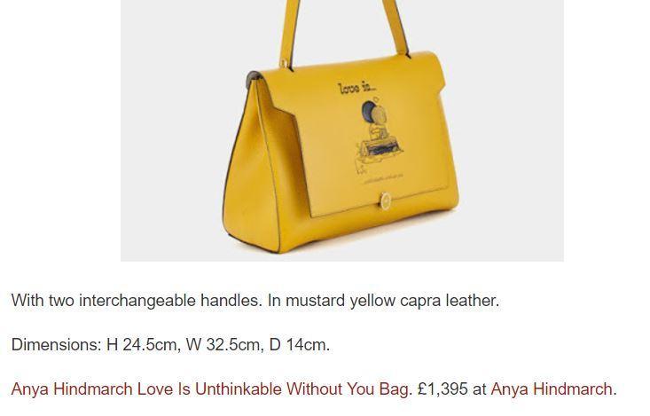 Alia Bhatt's bag