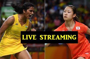 Korea Open Superseries Final
