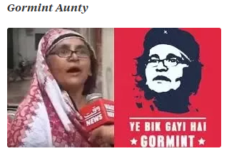 Gormint Aunty