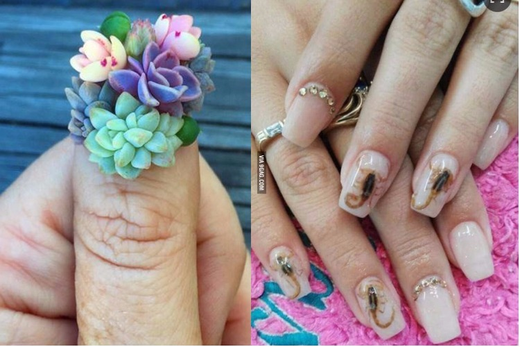 Scorpion to glass, a look at weirdest nail art trends