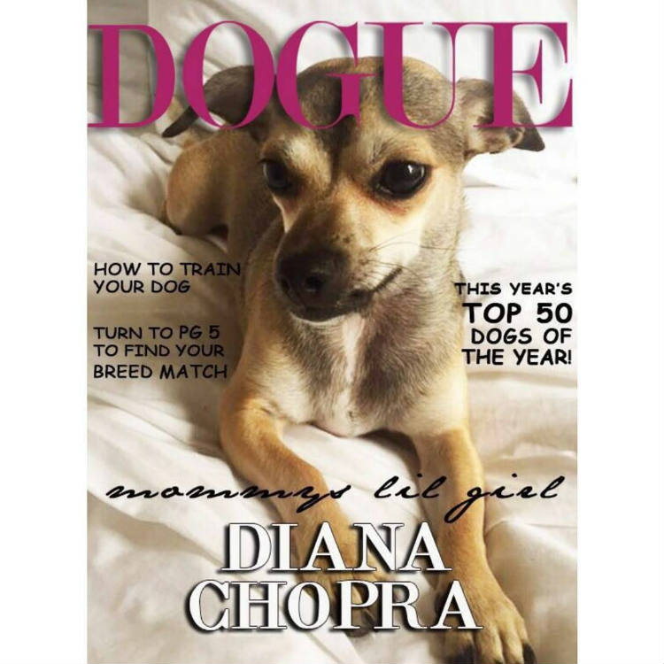 Diana Chopra on the cover of a magazine