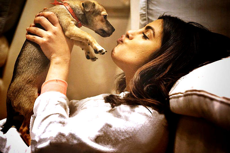 Priyanka Chopra's pup Diana is on a magazine cover now, making mommy proud!