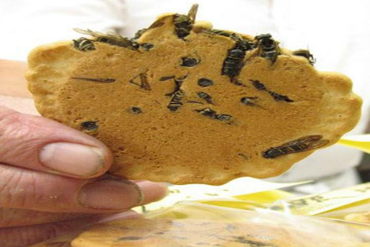 Wasp rice cracker, food