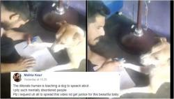 Video of man beating dog for not saying ABCD is making people angry