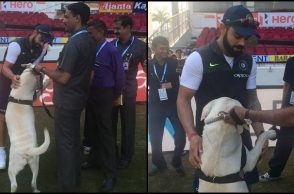 Virat Kohli's love for dogs